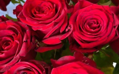 Am Freitag ist Valentinstag….