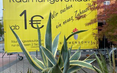 Viele schöne Agaven, Aloe Vera und andere pflegeleichte Pflanzen warten auf neue…