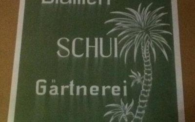 Blumen Schui updated their profile picture.