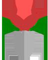Blumen Schui